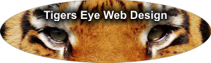 Tigers Eye Web Design